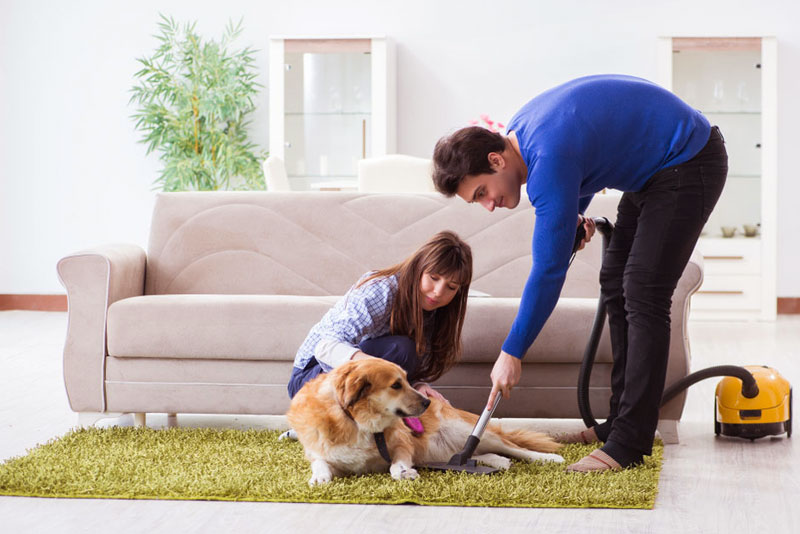 Best Vacuum Cleaner for Pet Hair 2019 – A Guide for Dog & Cat Owners
